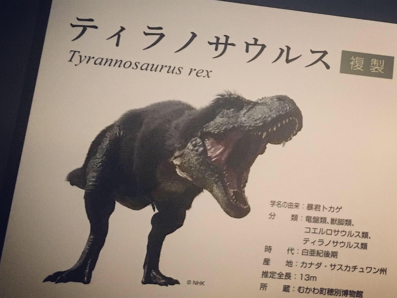 恐竜イメージ図